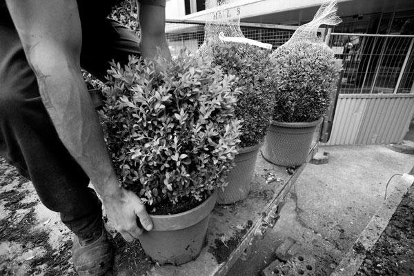 Un jardin se cr e nolin gillot cr ateurs de jardins for Cree un jardin